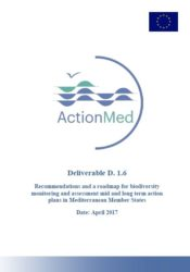 Protected: ActionMed Deliverable 1.6