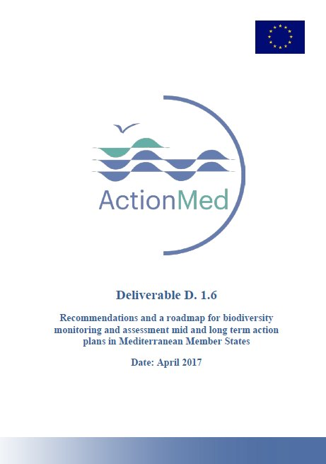 ActionMed Deliverable 1.6
